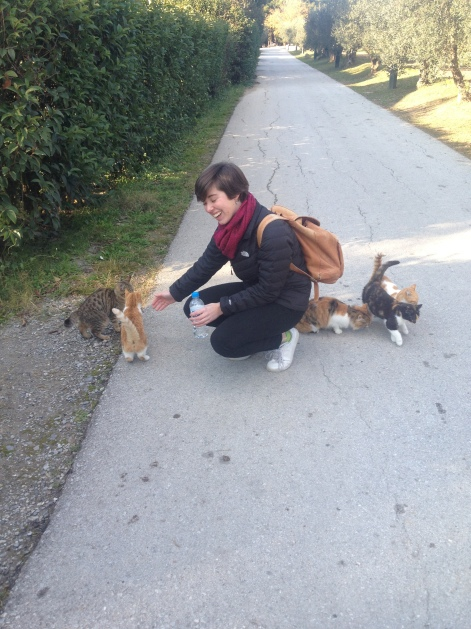 Anaika making some new friends on the Olive Trail